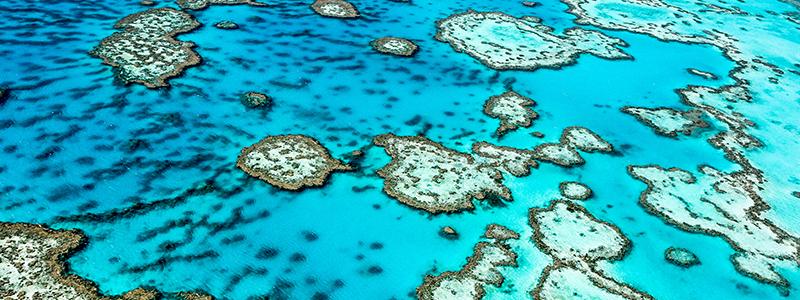 La Grande Barrière de Corail d'Australie